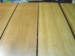 Blackbutt with Estapol finish
